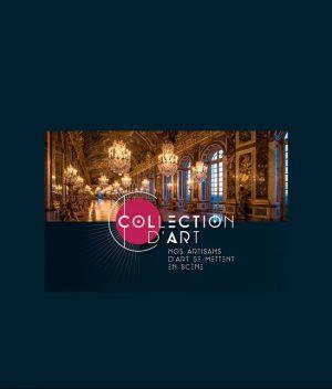 Collection d'art 2020 - moss projects- moss series - collection d'art - rouen - departement seine maritime - isa moss